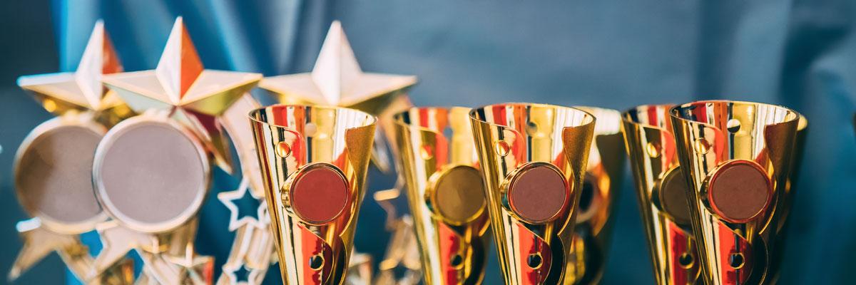 Premios a la excelencia y la calidad del aceite de oliva Mueloliva